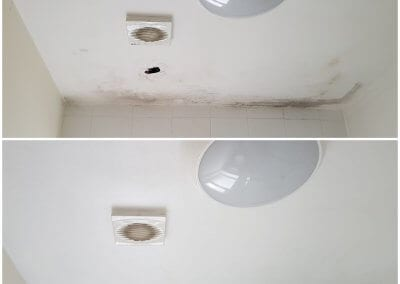 Roof Leak Damage Repairs